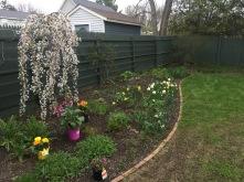 beginning of May